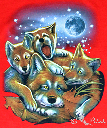 Kids  -  T-Shirt  Fuchs Familie