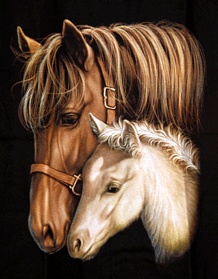 Kids  -  T-Shirt  Pferde braun