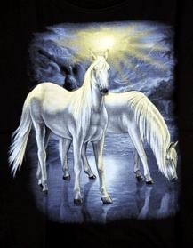 Kinder - T-Shirt  Pferde weiß
