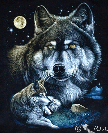 Kinder - T-Shirt  Wolf - Wölfe